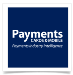 Payments-Intelligence-Logo-Withe-Boxes-Template-way2pay-93