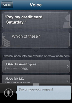 USAA-voice-mobile-paymetn-way2pay-91-12-13 (1)