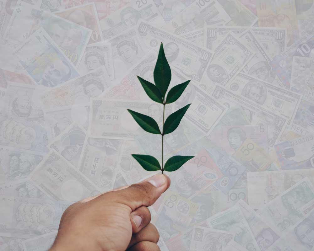 پول اخلاقی