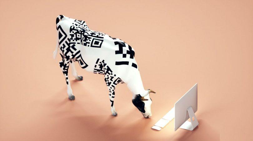 گاوهای آینده